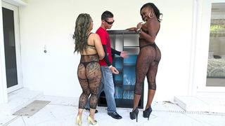 Naomi Gamble and Vixen Vanity shaking their big butts in some hot fishnets Thumbnail